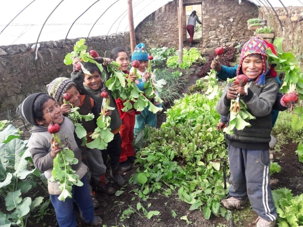 Bij scholen in de Andes legt de stichting van Simone Heemskerk moestuinen aan. Doel: voedselzekerheid voor de allerarmsten in Huyncho en omgeving. Privé © BDU media