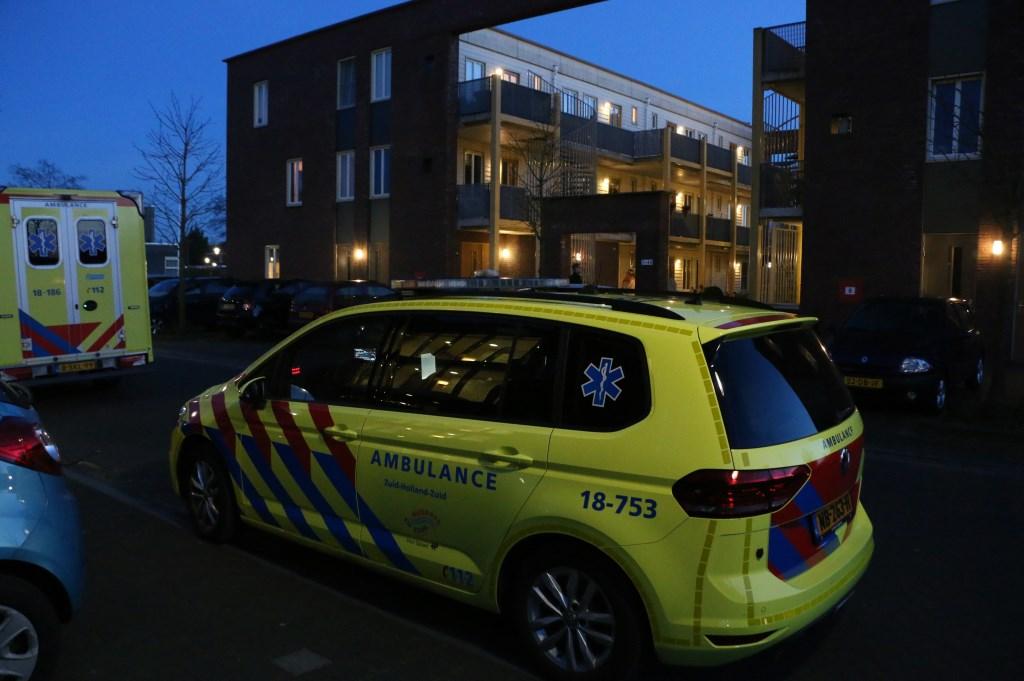 Jorrit de Haas/ZHZActueel.nl © BDU media