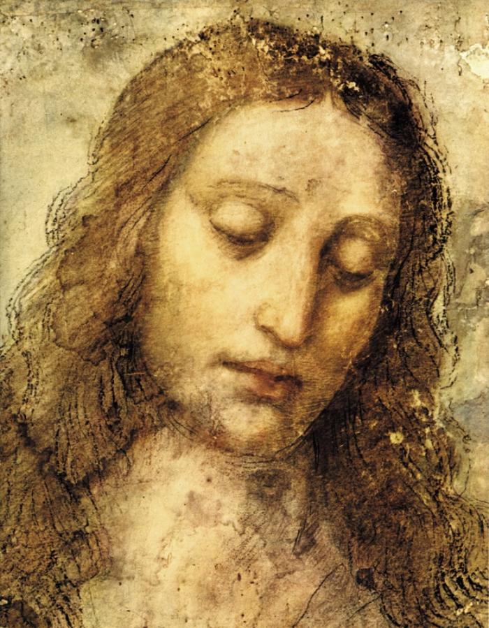 door Leonardo da Vinci