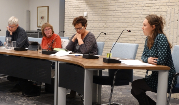 <p>Inge Verhoef spreekt in bij de Bomenverordening en Leny Visser (rode trui) luistert (archeif december 2017)</p>