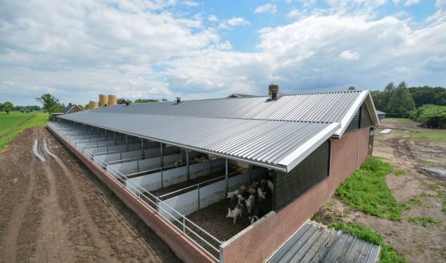 De provincie heeft de gemeente Woudenberg laten weten tegen de vestiging van een grote varkensstal aan de Slappedel 8 te zijn.