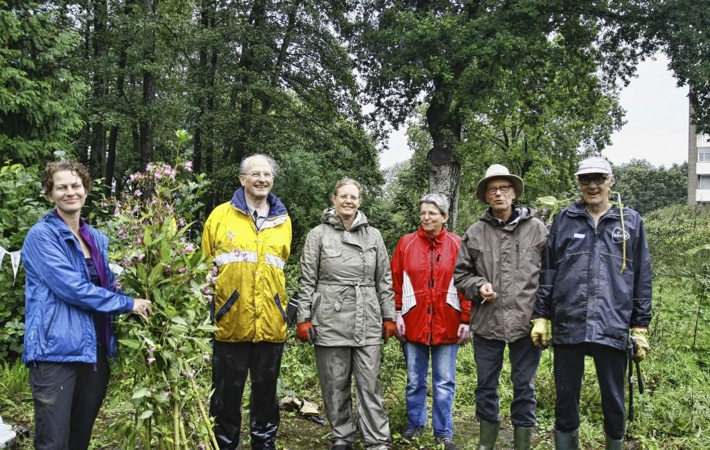 In maart 2014 richt een aantal stadsbewoners stichting Elisabeth Groen op.