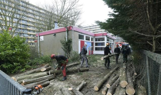 Bomenkap nabij rouwcentrum