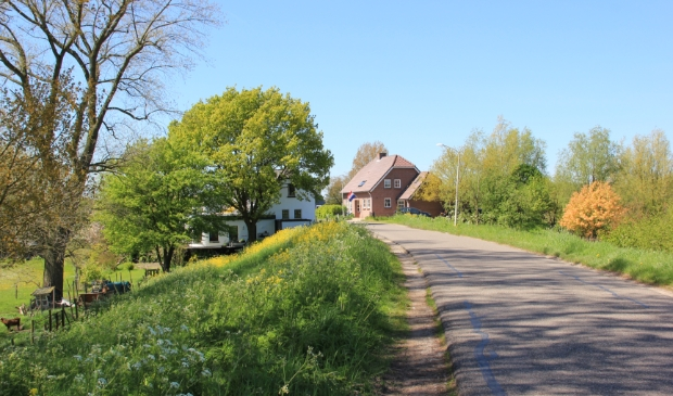 dijk tussen Gorinchem en Waardenburg