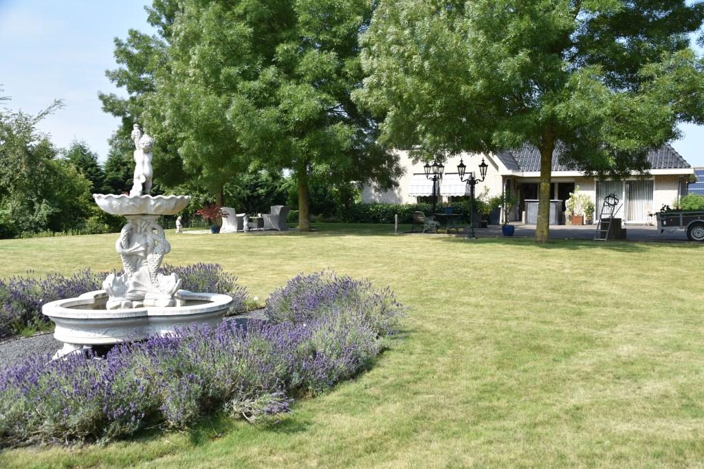 De tuin aan de voorkant van het huis Tim Hartman © BDU Media