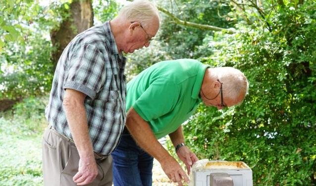 Henk Kooij en Gerbert Kos buigen zich over de bijen.
