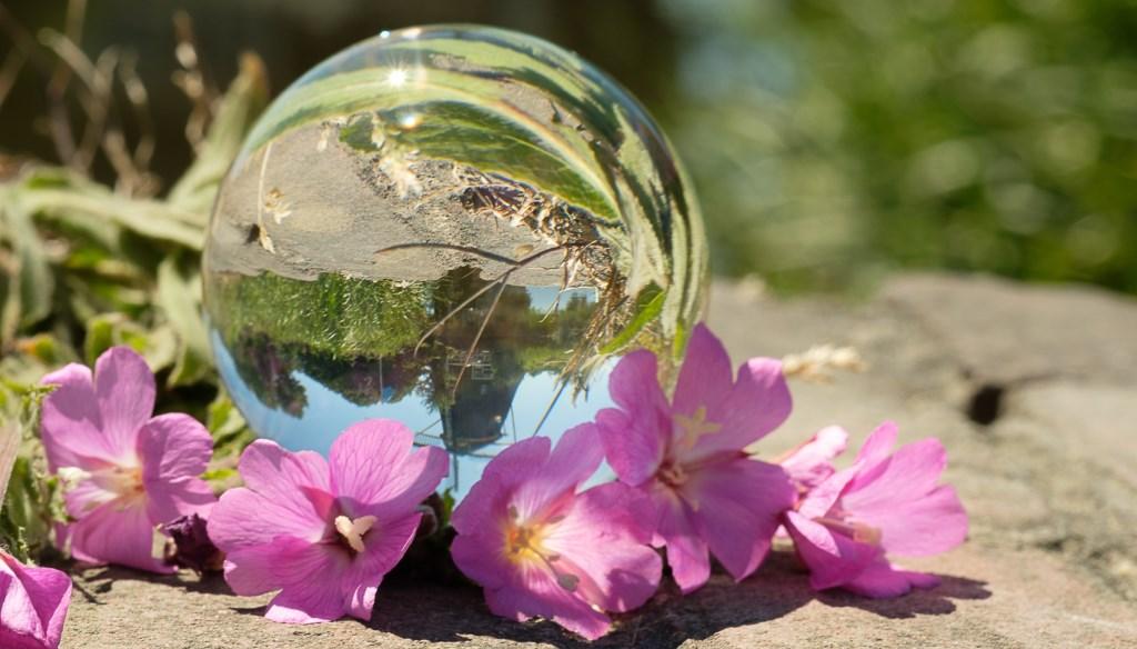 Riekermolen door een glazenbol gefotografeerd. Hans Keijzer © BDU media