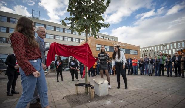 Onthulling van de nieuwe naam voor de nieuwbouw van het Nova College aan de Zijlweg in Haarlem met de nieuwe boom die voor op het plein staat.