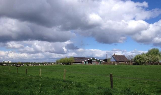 Melkveehouderij de Bie in Werkhoven