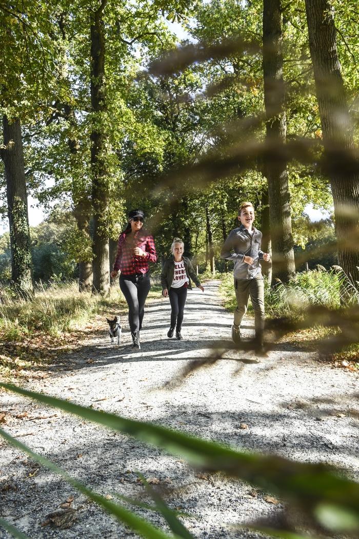 Oktober is wandelmaand op de Heuvelrug RBT Heuvelrug & Vallei © BDU media