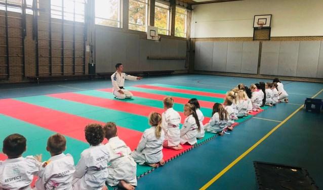 Kinderen leren een jaar lang judoën en meer.