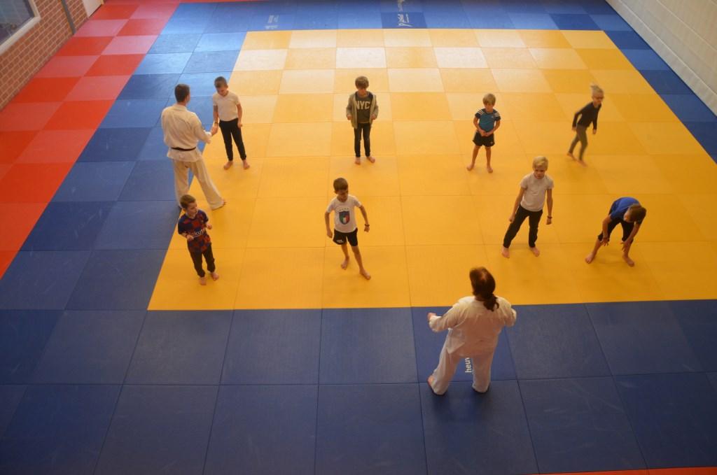 Karate bij Shiai-jo Ali van Vemde © BDU media