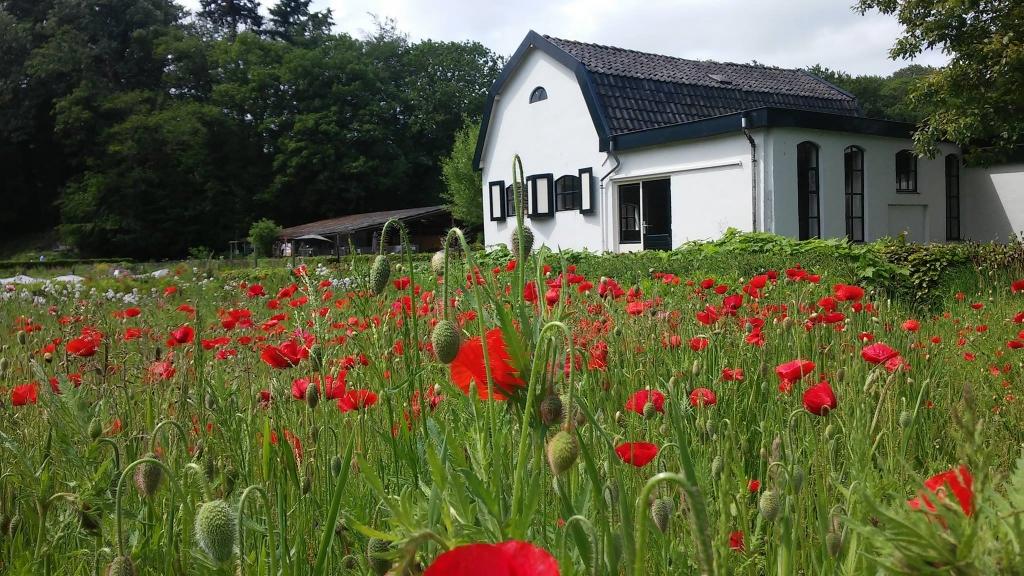 <p>Landgoed Kraaybeekerhof</p>