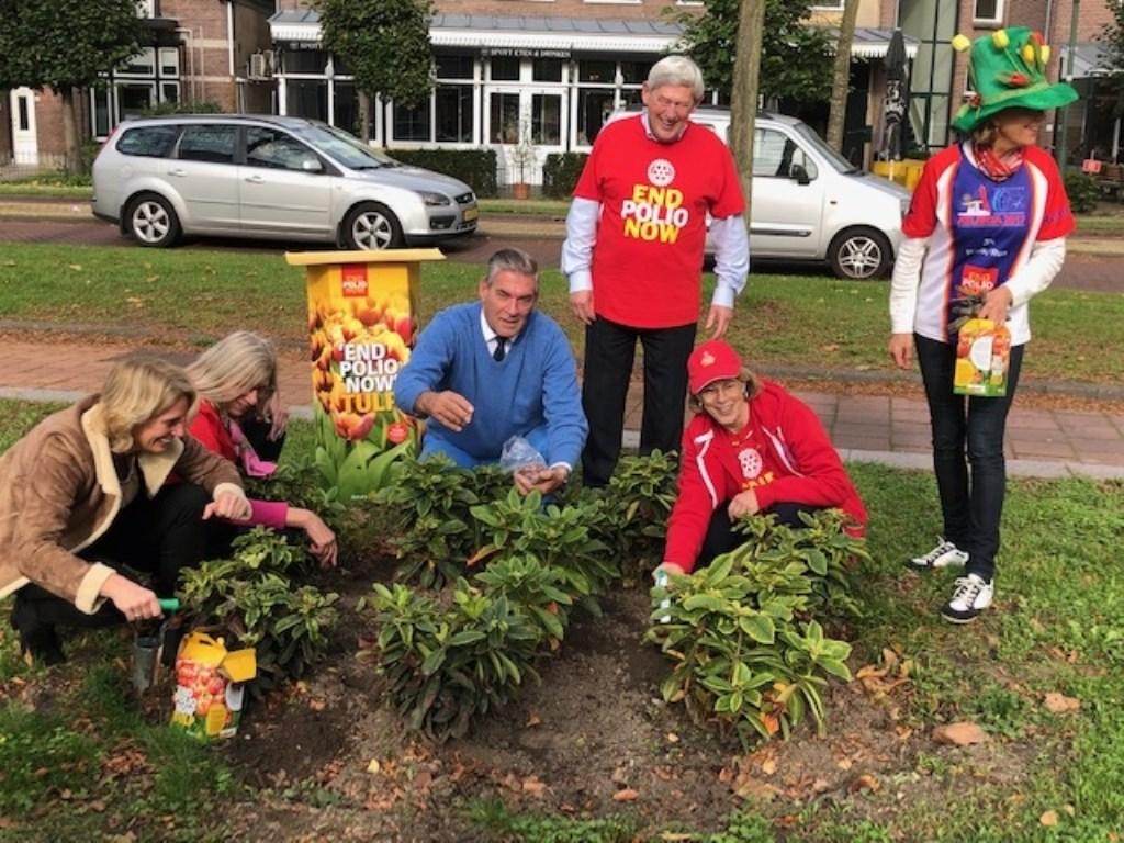 De organisatie heeft op verschillende locaties in Utrecht tulpen geplant.