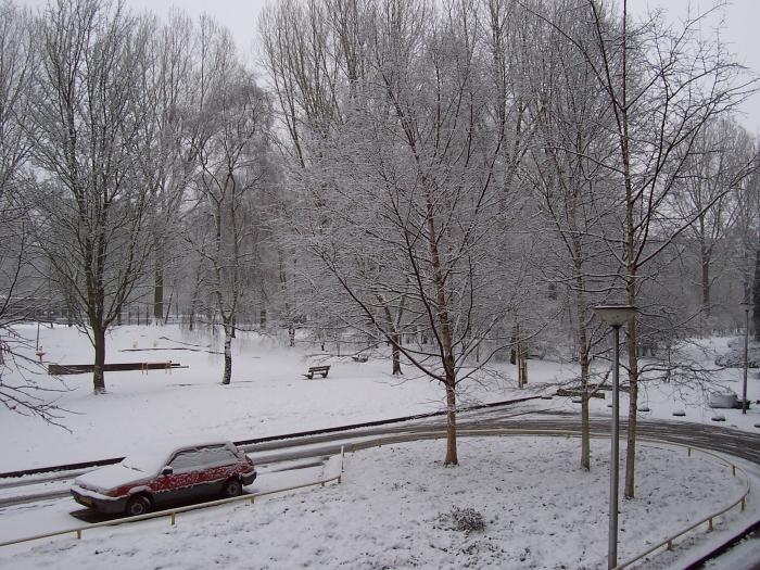 Park Zonnehof 2010