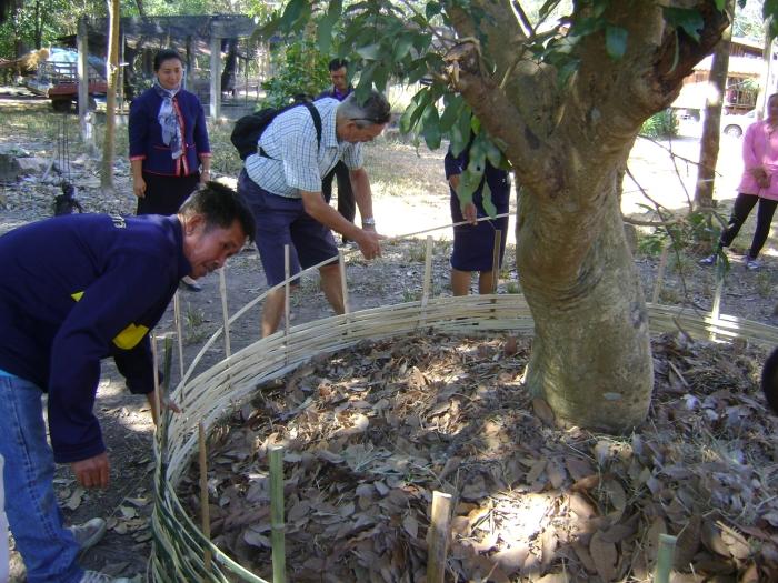 bambookorv vlechten theo vd Hombergh © BDU media