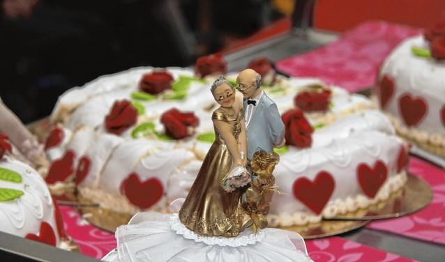 5473209_hco 44 bruiloftsfeest 03.jpg