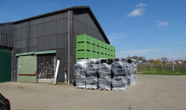 Fruitbedrijf Vernooij aan de Herenstraat in Werkhoven