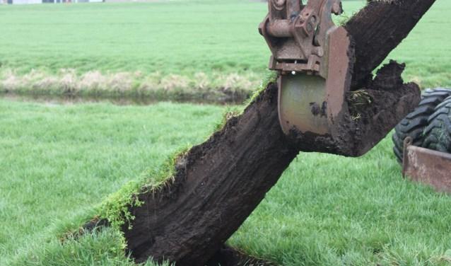 Een van de eiken boomstammen wordt uitgegraven. Paul Hiel © BDU media