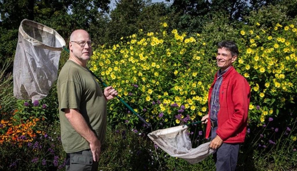 De bijenonderzoekers met schepnet bij bloemrijke vegetatie Provincie Utrecht © BDU media