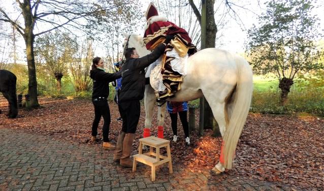 Sinterklaas maakt zich op voor een rondje Velsen.