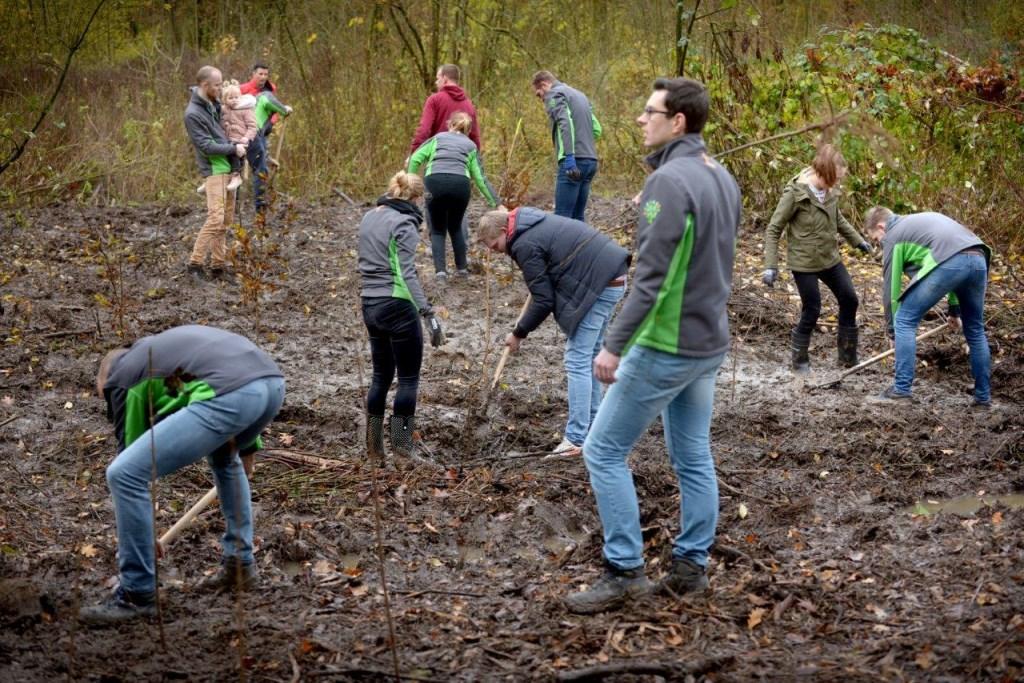100 medewerkers van BAM planten 1000 bomen Staatsbosbeheer © BDU media