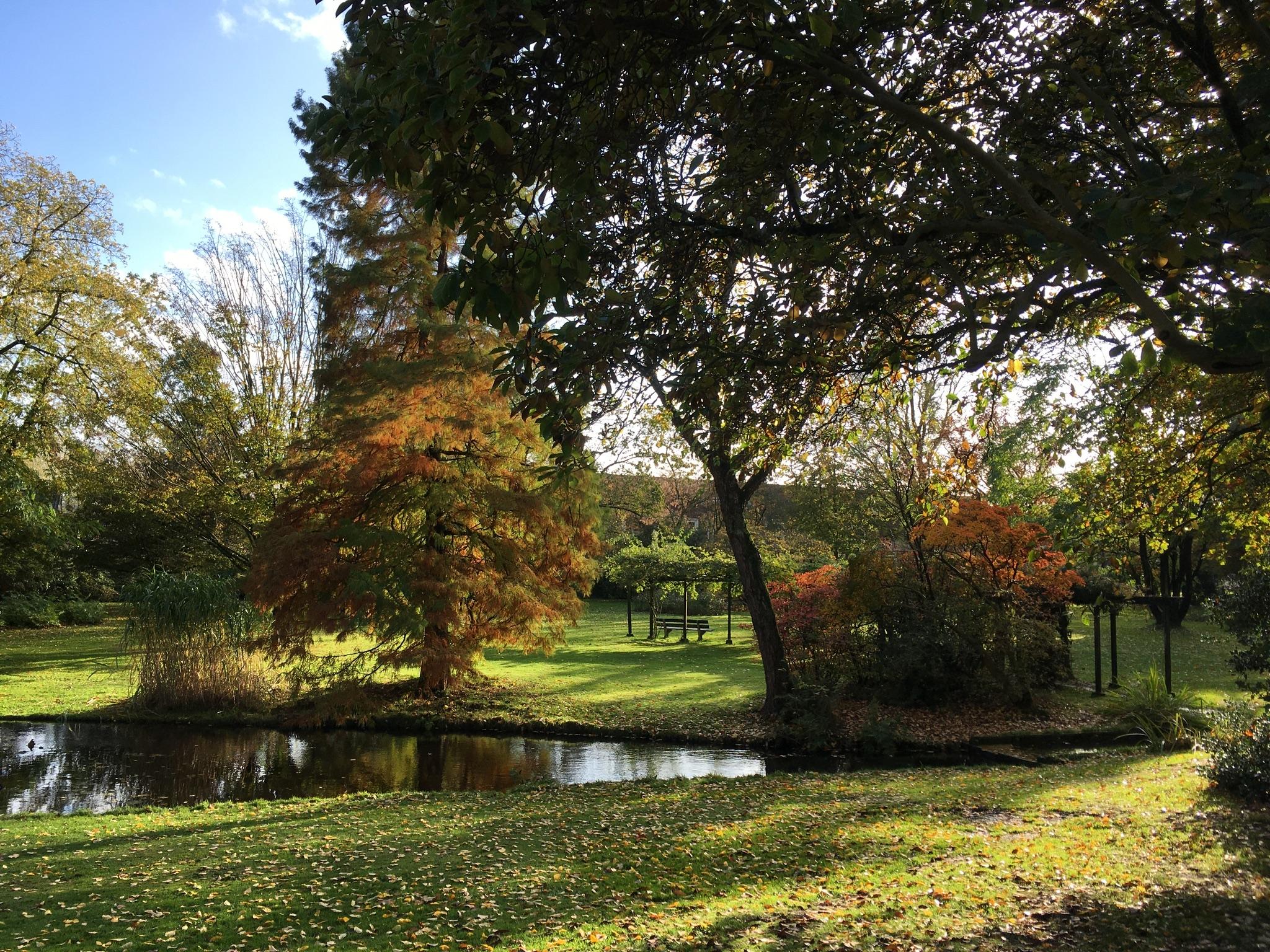 Doorkijkje in het Cantonspark  Willy van Dijk-Doornenbal © BDU media