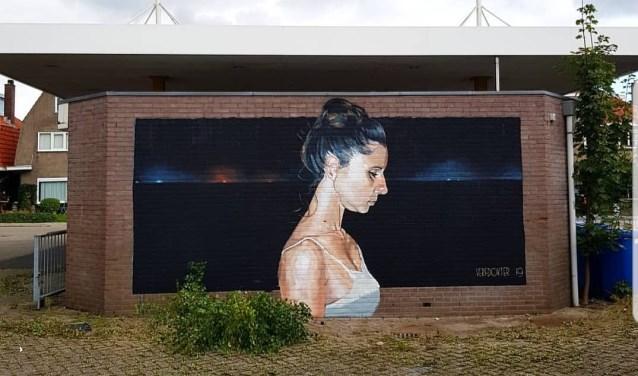 Een nieuwe muurschildering aan de Molenweg van de vrouw van de Verfdokter