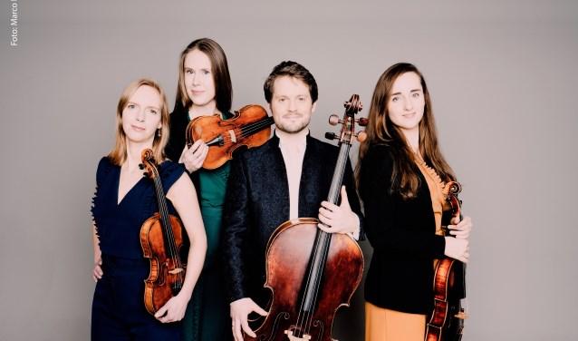 Het Dudok Quartet Amsterdam neemt je mee naar de muzikale werelden van Haydn en Mendelssohn.