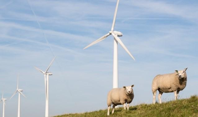 Groene stroom uit Nederland