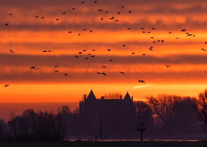 Zonsopkomst boven Slot Loevestein Wim den Besten © BDU Media