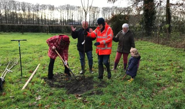 Wethouder Willemien Vreugdenhil plant de eerste boom, samen met Eric en Geertje Mackay en kleinkind Fiene.