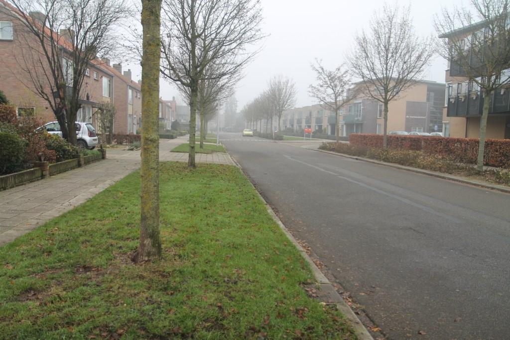 ruimte genoeg voor een fietspad Hannie van de Veen © BDU media