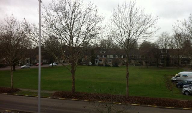 Het grasveld van De Oude Kolk is beoogd als bouwlocatie voor twintig woningen met parkeergarage.