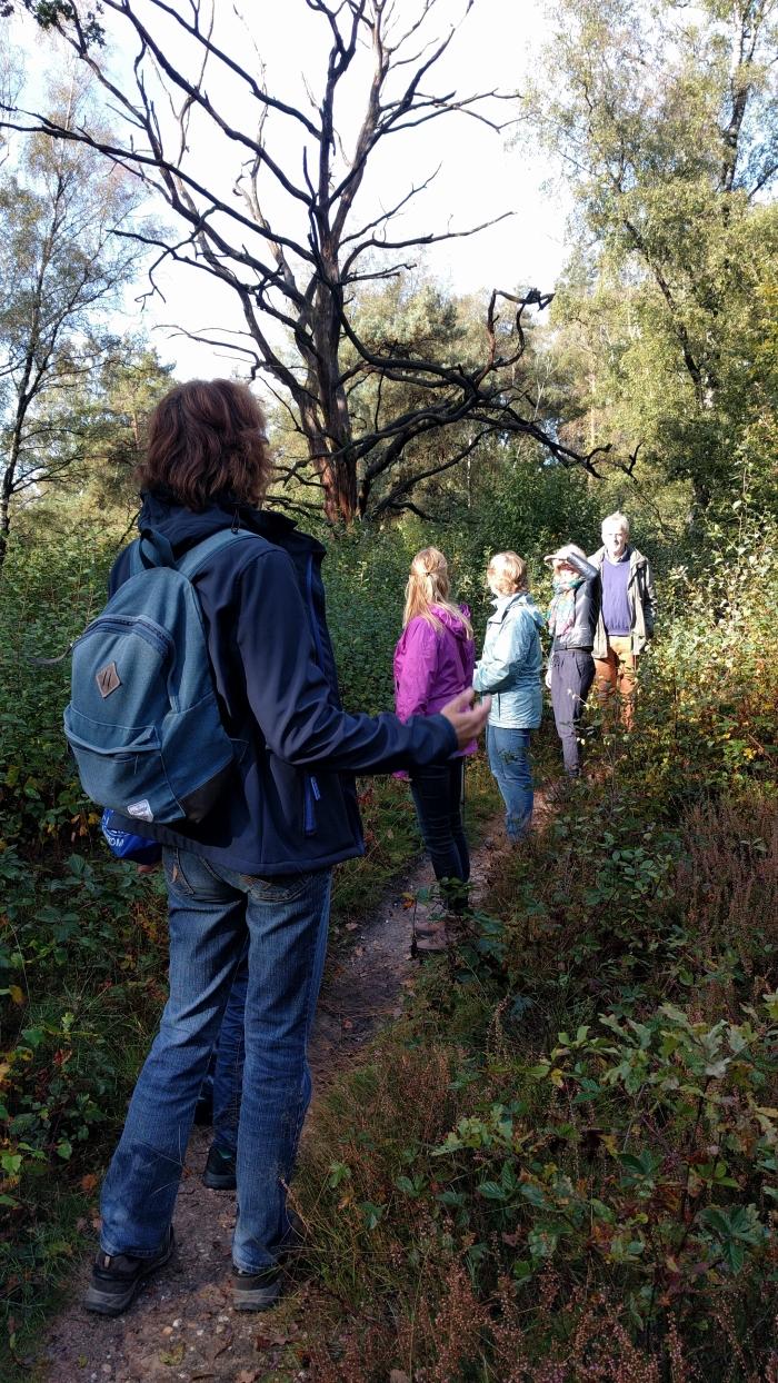 Wandelaars genietend van natuurbeleving