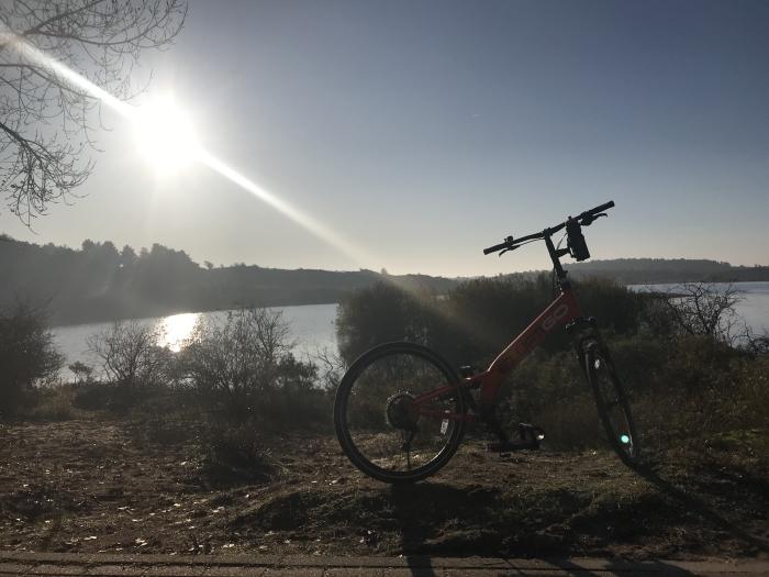 Uitzicht bij Vogelplas Kennemerduinen