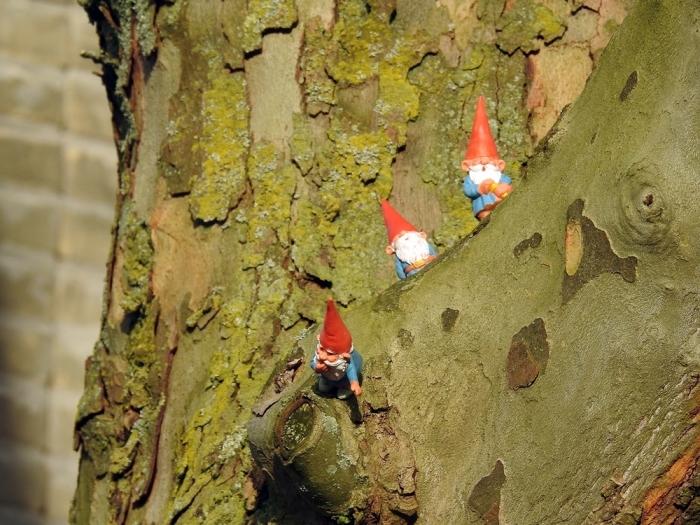 kabouters ineke meijboom © BDU media