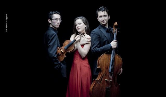 Het Amatis Piano Trio begint het jaar 2020 met Beethoven, Mendelssohn en Sjostakovitsj.
