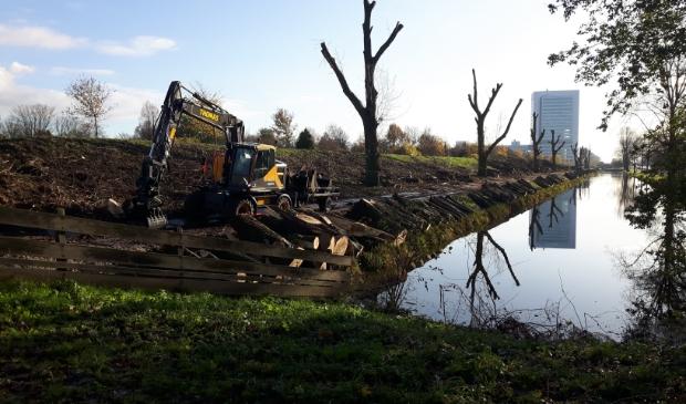 <p>Bomenkap wekt in Haarlemmermeer vaker weerstand op, zoals aan de Geniedijk anderhalf jaar geleden.&nbsp;</p>