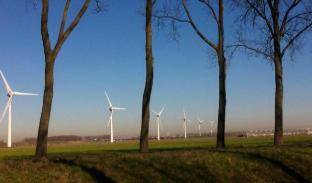 <p>Bomen en windmolens tegen een strak blauwe lucht</p>