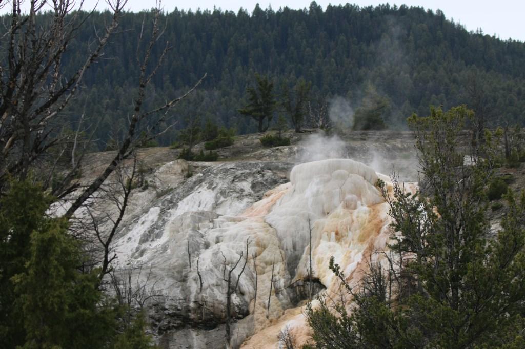 Yellowstone. MART LENOIRE © BDU media