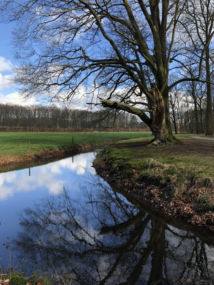 Bij kasteel Groeneveld Hennie Prinsen © BDU media