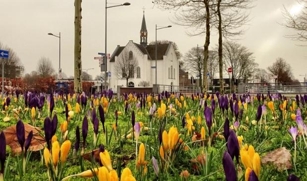 <p>Voorjaar bij de Witte Kerk</p>