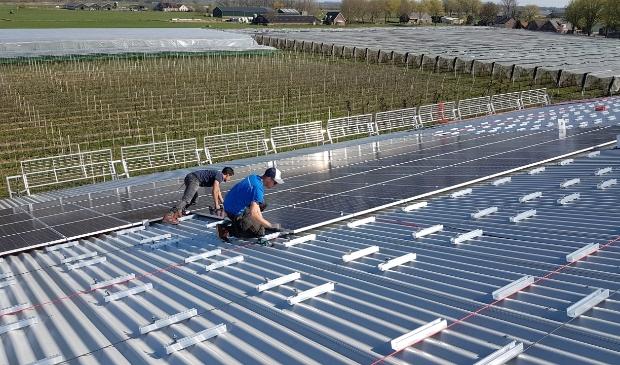 <p>Hier worden zonnepanelen aangelegd op het dak van fruitteler Westeneng in Bunnik (archief)</p>