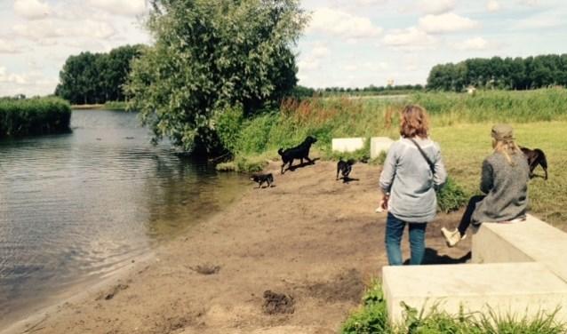Bij het Hondeneiland in de Ouderkerkerplas mogen honden wel los lopen in deze periode.