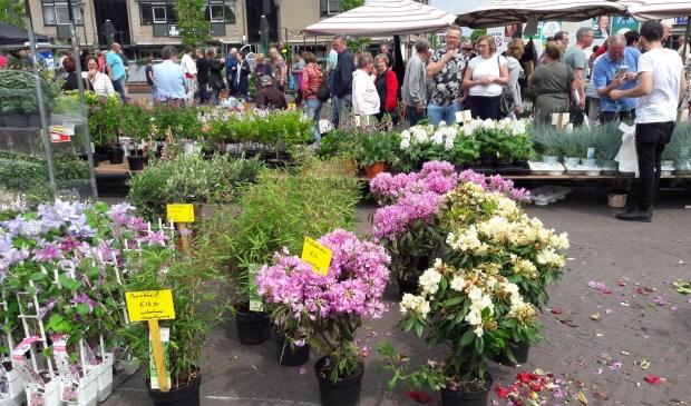 Bloemenmarkt op Het Rond