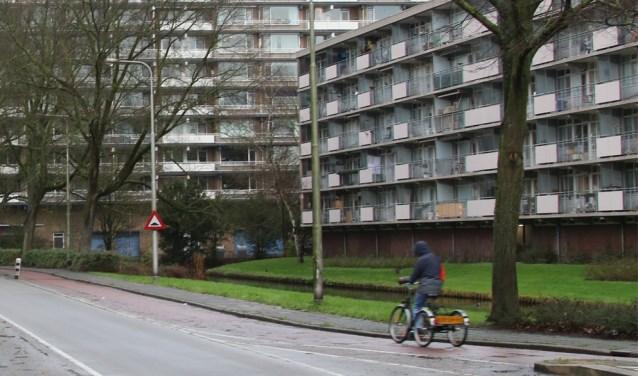 Woongebouwen moeten onder de boomtoppen blijven, zoals de flat links. Verder omhoog gaat alleen nog in de vorm van torens.