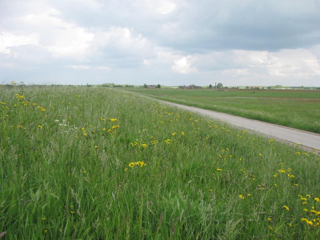 Hetzelfde stuk in 2019 Stichting Natuur- en Milieu NW-Veluwe © BDU Media
