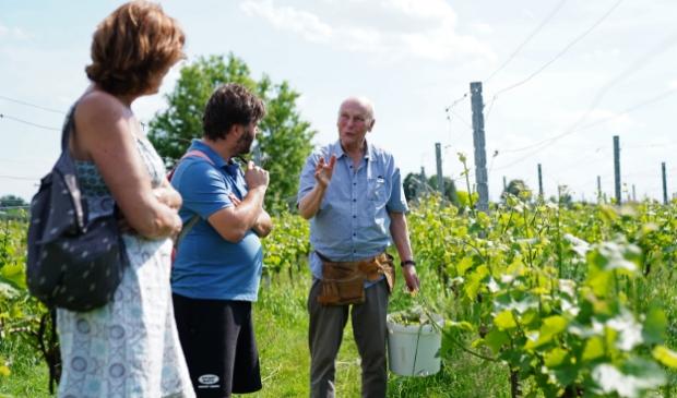 <p>Een rondleiding door de wijngaard of genieten van een glas wijn op het terras bij De Amsteltuin.</p>