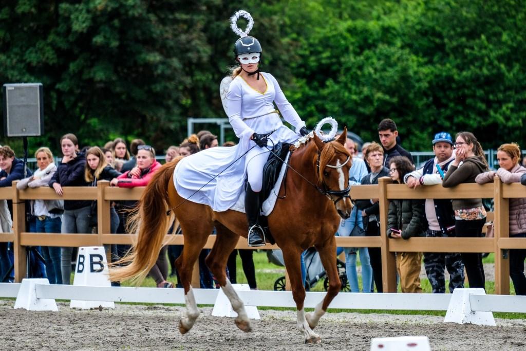 Concours Hippique 2019 Show Avond Jan Aukes © BDU media